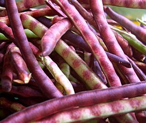 [Image: purplehull-peas.jpg]